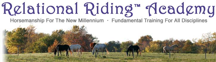 Relational Riding™ Academy - Horsemanship for the new millenium - Fundamental training for all disciplines